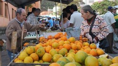 Photo of Secretaria de Agropecuária e Desenvolvimento Rural abre recadastramento para feirantes